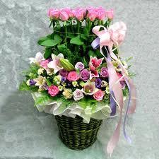 hoa | 6498